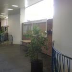 WISO факултета отвътре